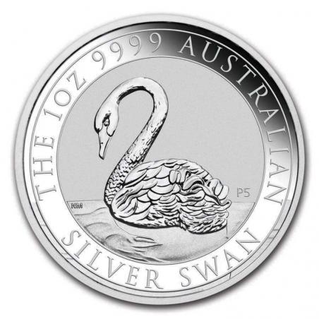 Australian Swan 2021 - rewers